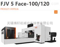FJV 5 Face-100/120