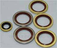 氟胶耐高温进口组合垫圈