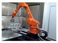 采购自动喷涂机器人选丹巴赫
