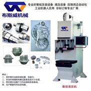 BSW07S数控油压机-伺服液压机